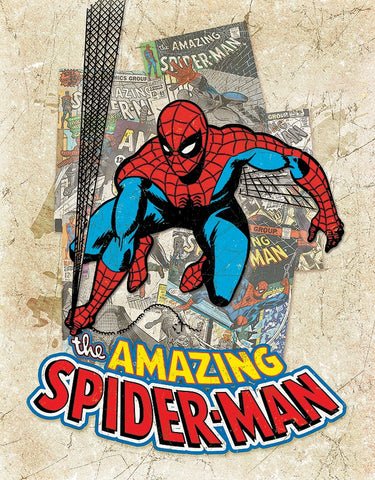 The Amazing Spider Man Tin Sign