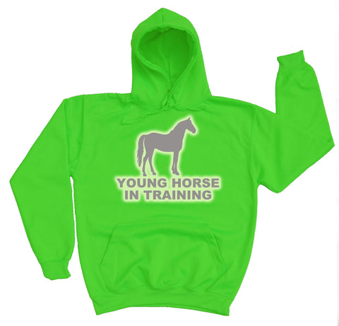 Young Horse In Training Reflective Horse Riders Hoodie