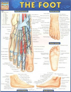 The Foot - cards