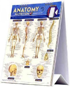 Anatomy & Nutrition for Body and Health - flip chart
