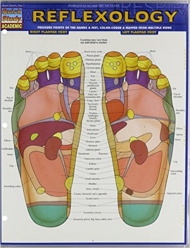 Reflexology: Pressure Points of the Hands & Fee, color-coded & Mapped from Multiple Views