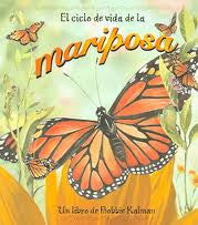 El Ciclo De Vida De La Mariposa -Life cycle of a butterfly (Spanish)