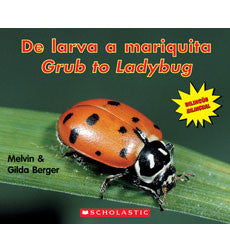 De Larva a  Mariquita - Grub to Ladybug (Spanish-English)