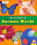 Bilingual Dictionary: My first books of German words (German-English)