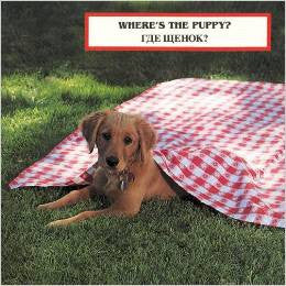 Where is the puppy (Russian-English)