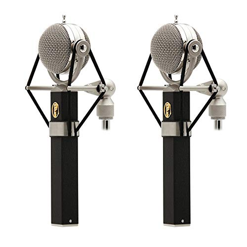 Blue Dragonfly Large-Diaphragm Cardioid Studio Condenser Microphone (2-Pack)