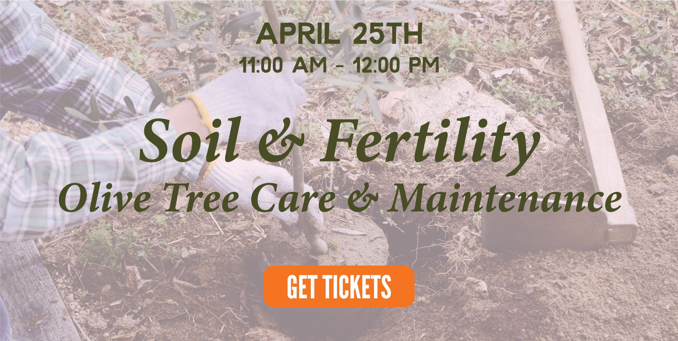 soil fertility | texas hill country olive co.