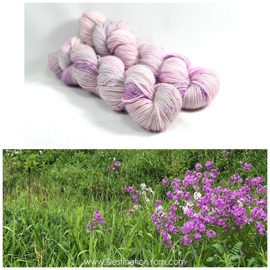 Destination Yarn DK Weight Yarn Roadside Wildflower - DK WEIGHT