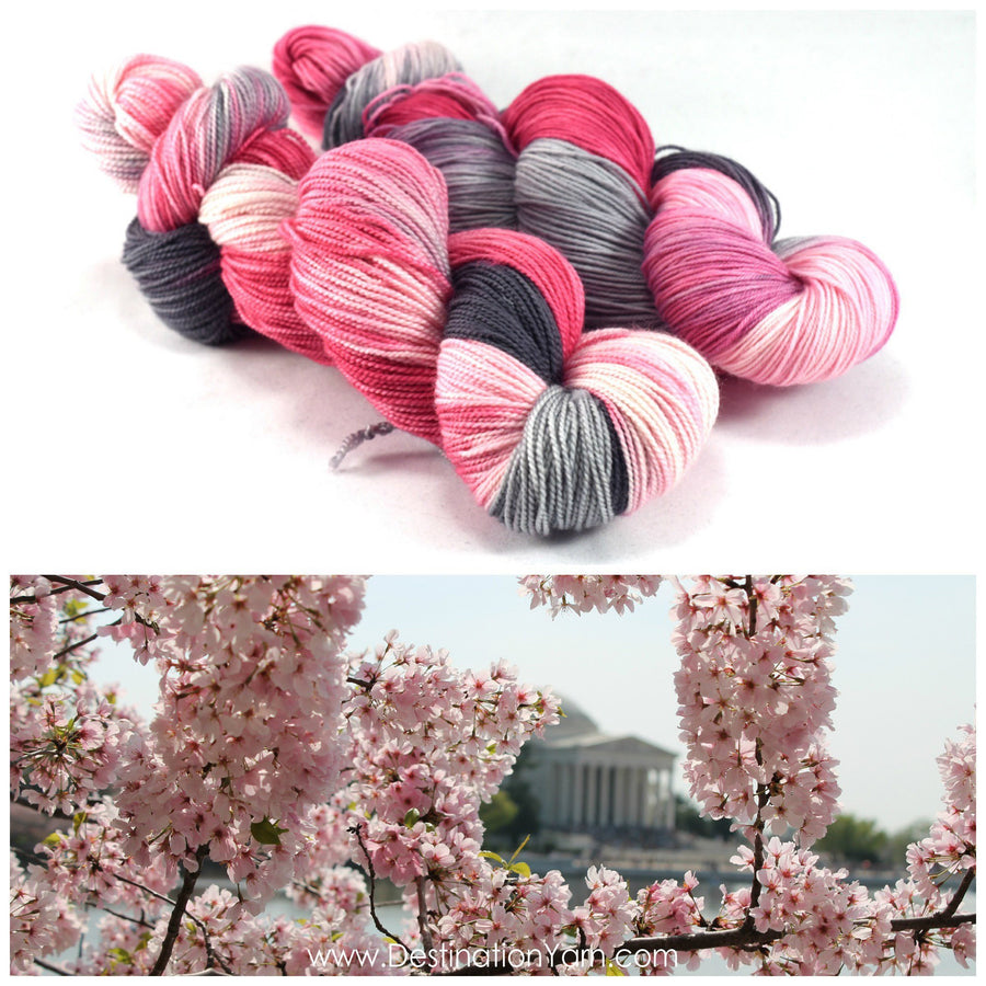 Destination Yarn fingering weight yarn BLOSSOMS AND MONUMENTS