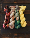 Destination Yarn fingering weight yarn Fall Full Skein Set