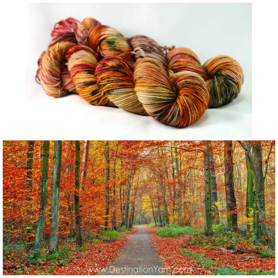 Destination Yarn fingering weight yarn FALL RUN