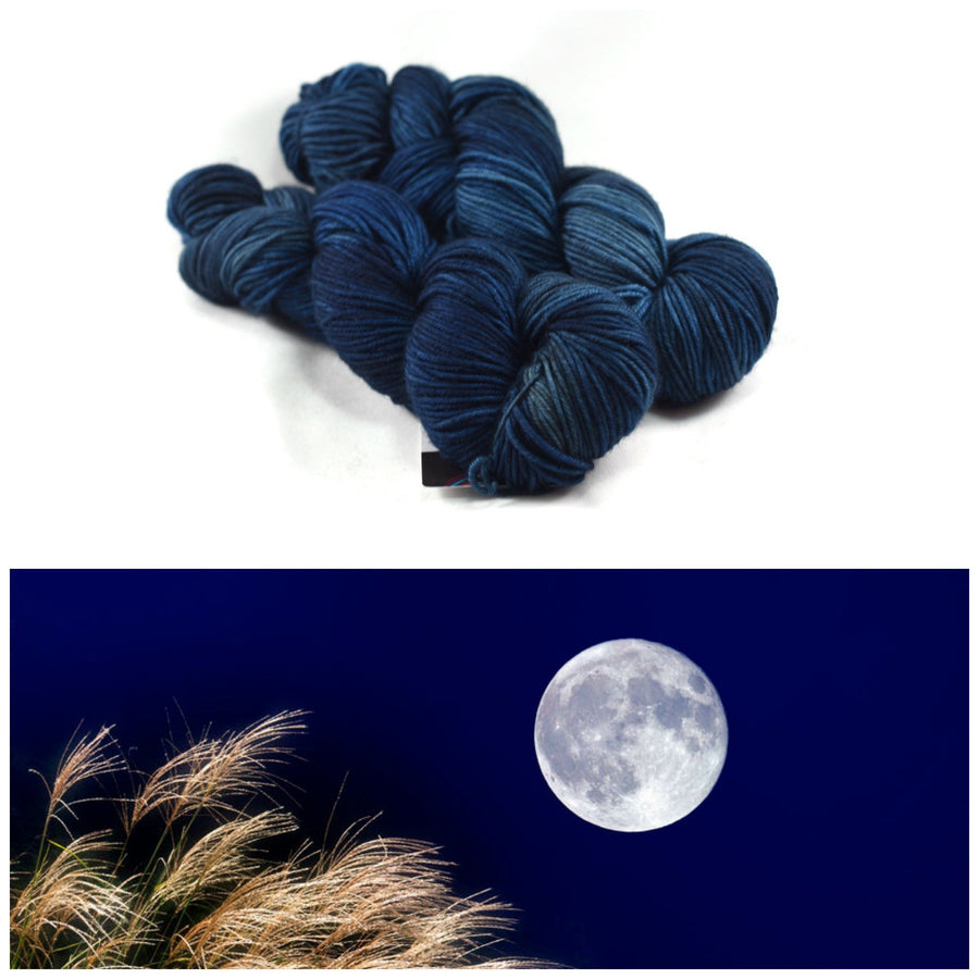 Destination Yarn fingering weight yarn HARVEST MOON