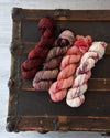 Destination Yarn fingering weight yarn Hometown Collection Full Skein Set