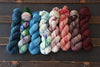 Destination Yarn fingering weight yarn Hometown Collection Full Skein Set - City Park