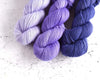 Destination Yarn fingering weight yarn Passport Jacaranda Tree - Dark