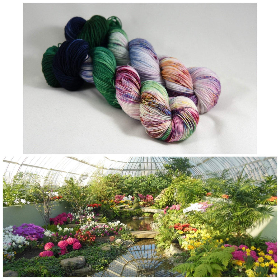 Destination Yarn fingering weight yarn Postcard (Fingering Weight) Phipps Conservatory