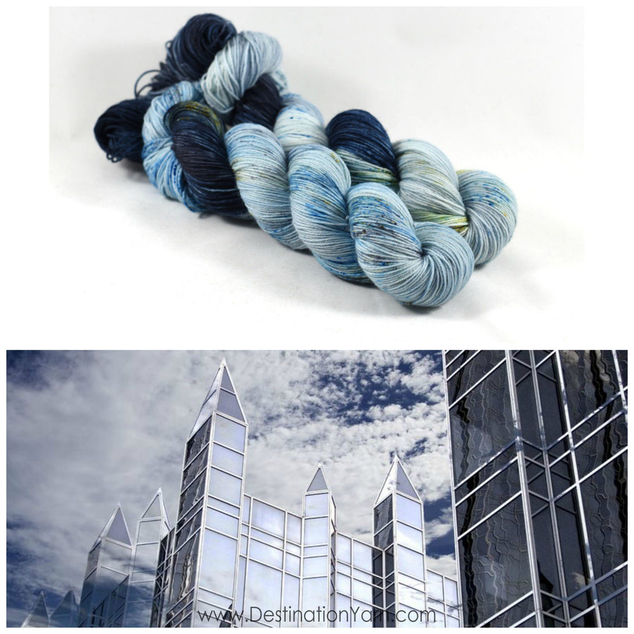 Destination Yarn fingering weight yarn PPG PLACE