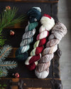 Destination Yarn fingering weight yarn Scandinavian Holiday 2020 Set