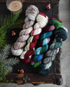 Destination Yarn Mini Skein Set Holiday 2020 NEW COLORWAYS ONLY - MINI SKEIN SET