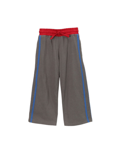 Charcoal & Blue Organic Side Stripe Pants with Red Trim