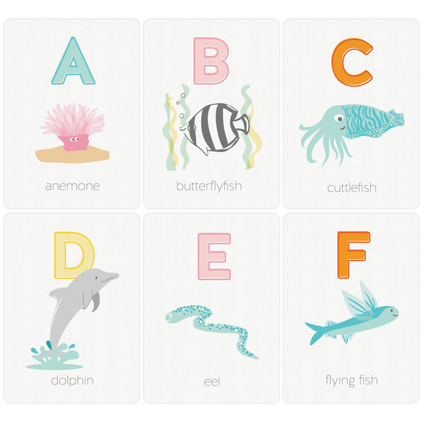 Ocean Creature Alphabet ABC Flash Card Set