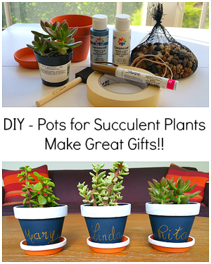 Our DIY Pots for Succulent Plants