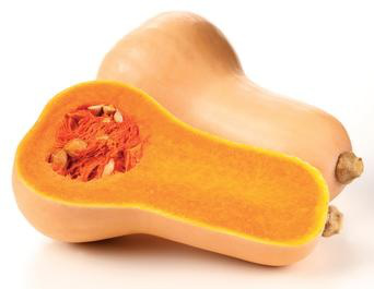 recipes-butternut-squash