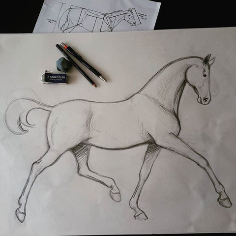 Horse half-pass drawing for sculpture