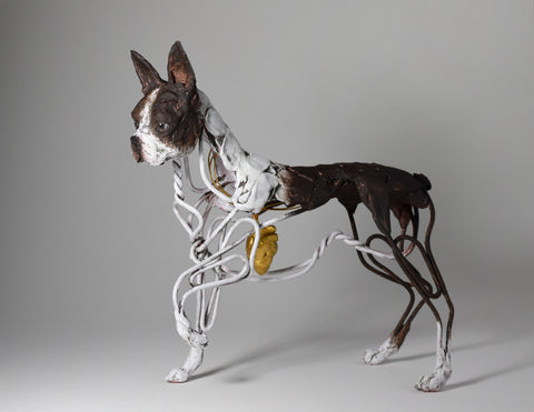 Boston terrier dog sculpture from wire and clay by Susie Benes
