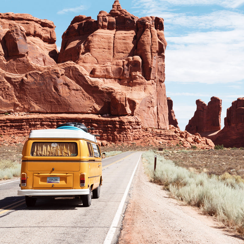 Things to Consider When Organizing a Road Trip