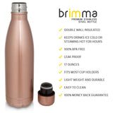 Insulated Stainless Steel Water Bottle - 17 oz - Rose Gold