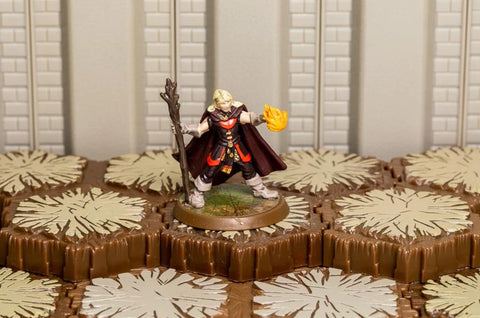 Chardris - Unique Hero-All Things Heroscape
