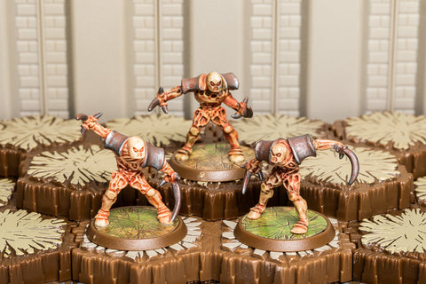 Marro Dividers - Common Squad-All Things Heroscape