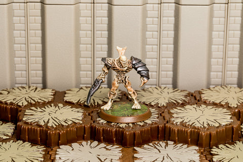 Ne-Gok-Sa - Unique Hero-All Things Heroscape