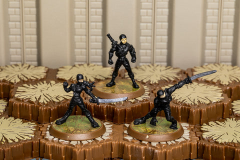 Ninjas of the Northern Wind - Unique Squad-All Things Heroscape