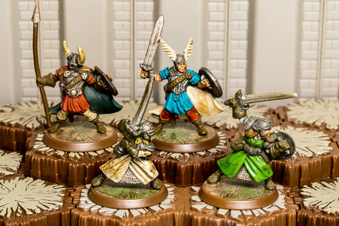 Tarn Viking Warriors - Unique Squad-All Things Heroscape