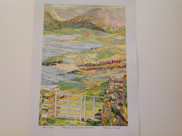 """ Farmland on the dingle peninsula """
