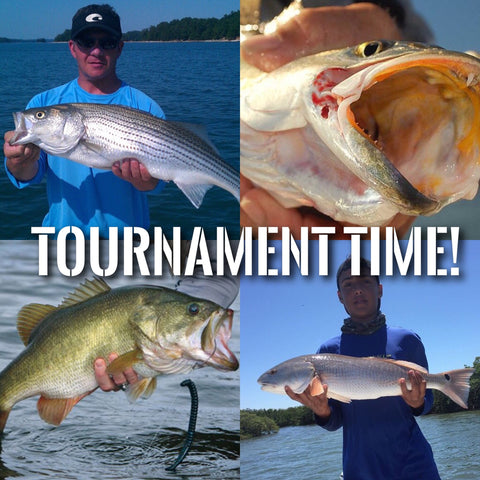 Nationwide Online Multi-species Fishing Tournament