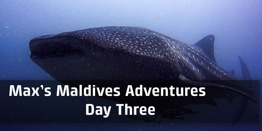 Max's Maldives Adventure Day 3