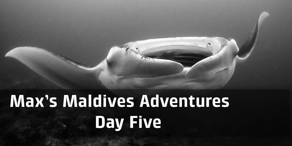 Max's Maldives Adventure day 5