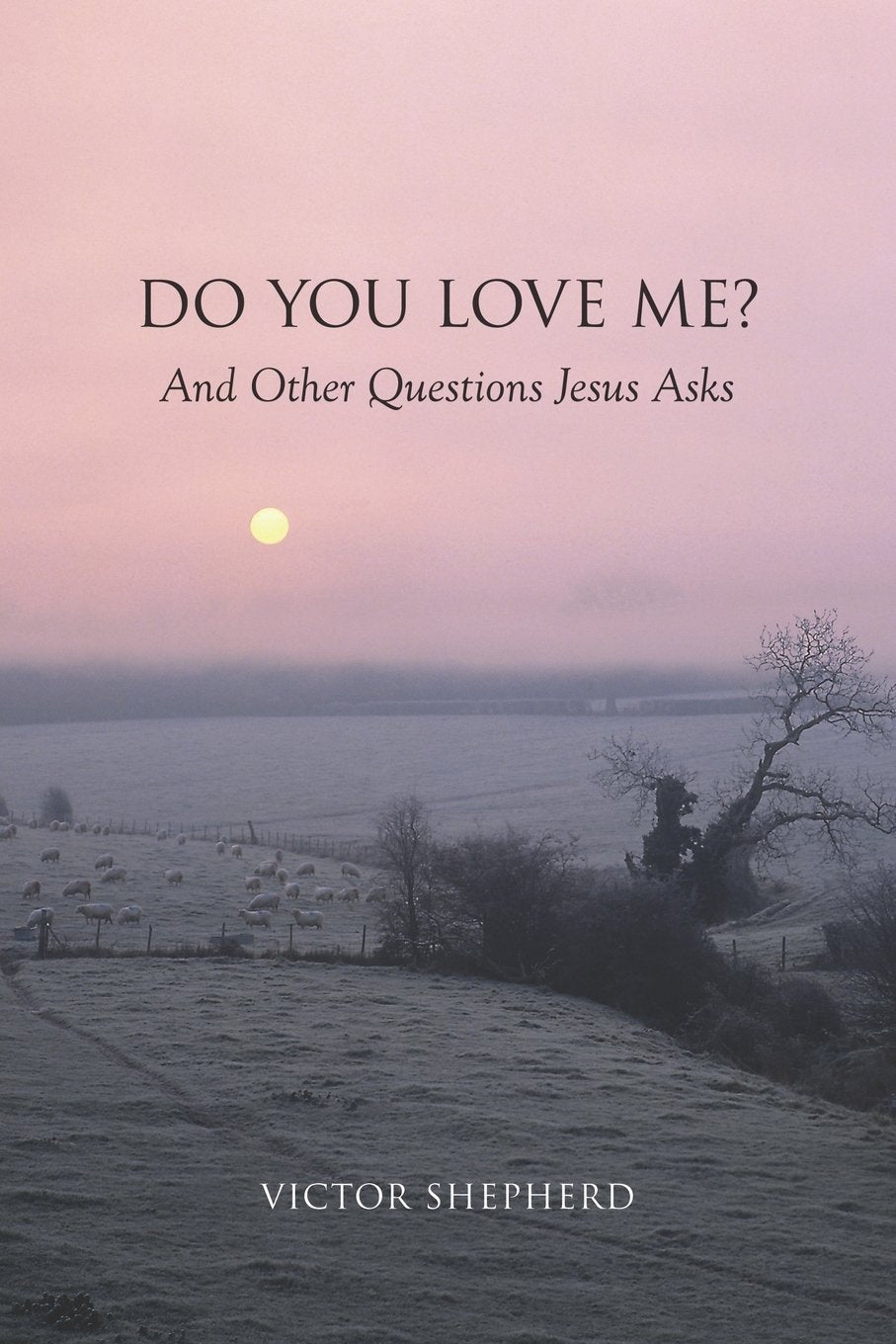 Do You Love Me? And Other Questions Jesus Asks