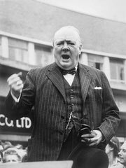 Where To Buy Ascots Winston Churchill