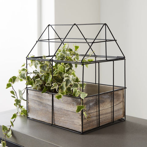 Botanical Green House Planter