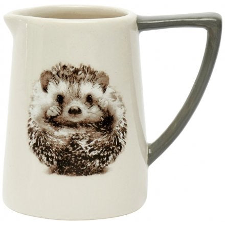 Ceramic Hedgehog Jug