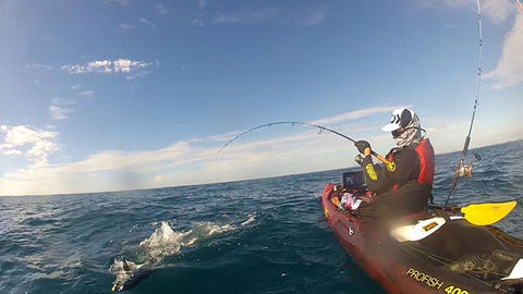 longtail tuna hooked and fighting hard
