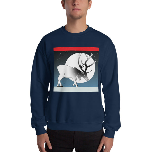 Winter Sweatshirt