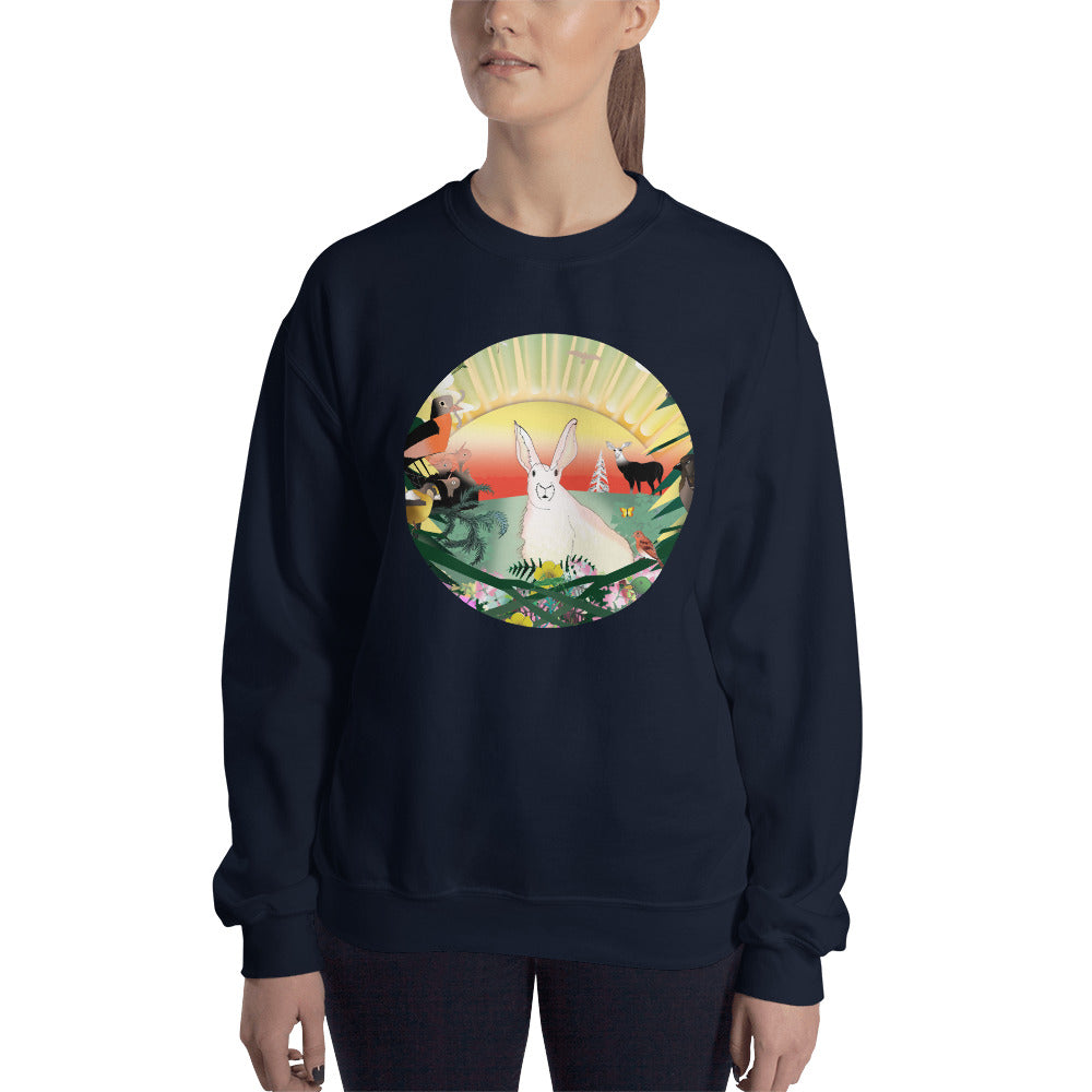 Sweatshirt, Spring Rabbit