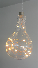 Light Bulb with seed lights. Copper Warm White.