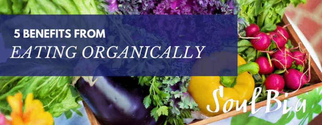 5 Benefits From Eating Organically