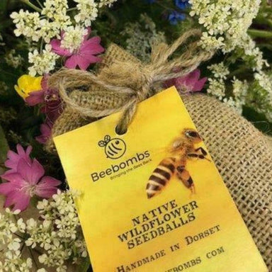 Beebombs - Native Wildflower Seedballs - SoulBia